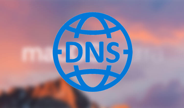 Photo of How to Clear DNS on Mac