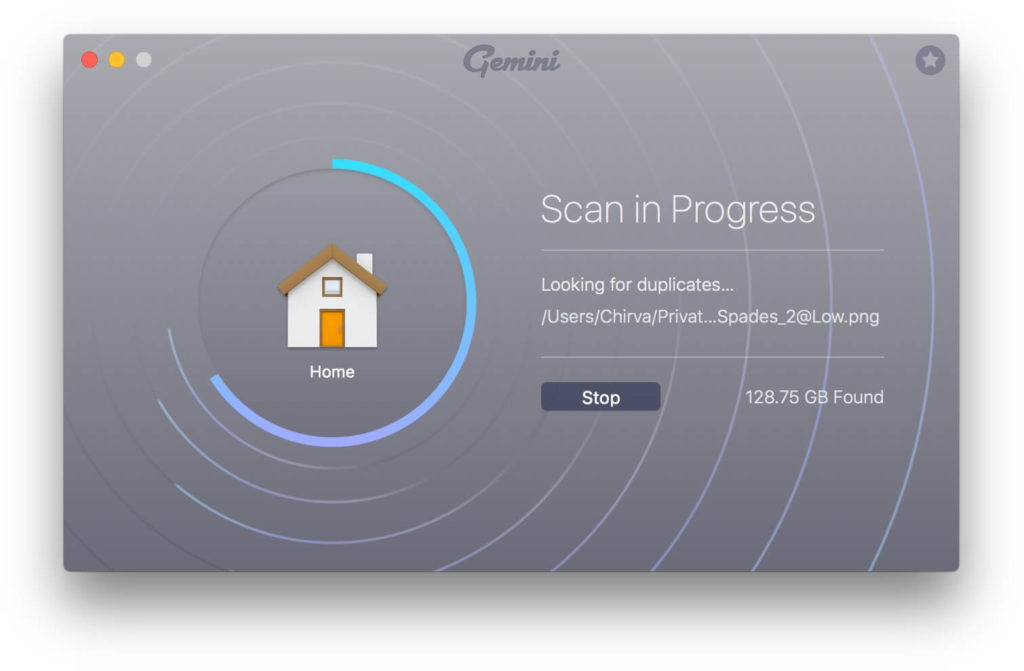 gemini scanning progress