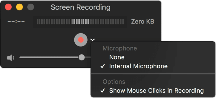 Screen Recording Window